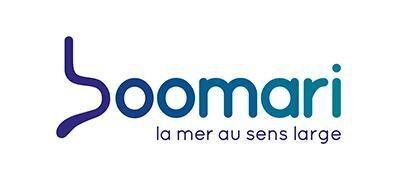 Boomari-Logo